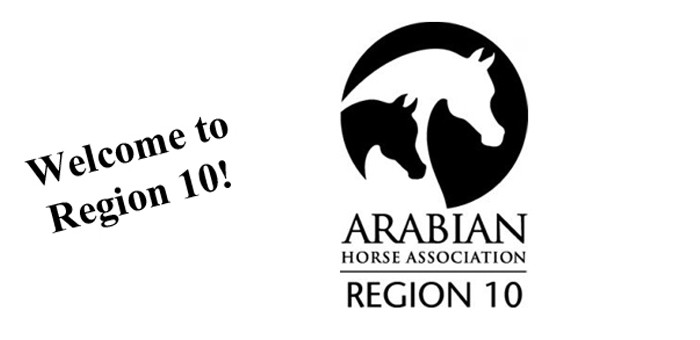 Region 10 Arabians | Region 10 Arabians
